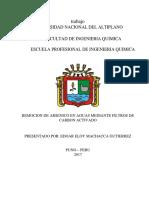 Trabajo de Investigacion - Remocion de Arsenico Con Filtros de Carbon Activado