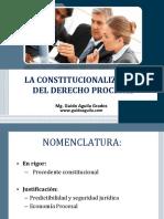 La Constitucionalizacion Del Derecho Procesal