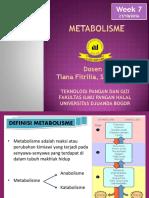 VI & VII Metabolisme.pdf