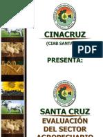 CINACRUZ-Evaluacion-sector-agropecuario-gestion-2017.pdf