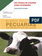 LEGISLACION PECUARIA.pptx
