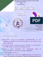 escherichiacoli-130506204245-phpapp01