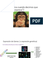 Transcripcion 1_18P.pdf