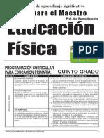 SESIONES DESARROLLADAS FÍSICA 5.° GRADO.pdf