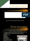 Horno Micro Partes