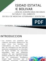 Universidad Estatal de Bolivar Carnes y Leche