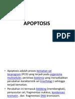 1.Apoptosis...