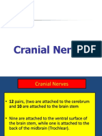 18.-Cranial-Nerves-to-send.ppt