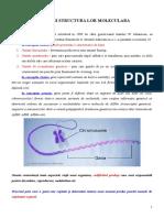 c6-Gena Definitie Si Structura