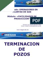 Terminacion-de-Pozos.pdf