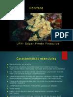 Generalidades Philo Poríferos EP