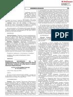 Establecen precisiones en la implementación del Código Procesal Penal del Distrito Judicial de Lima Norte y dictan diversas disposiciones