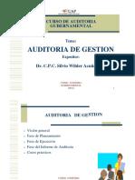 Auditoria de Gestión Gubernamental