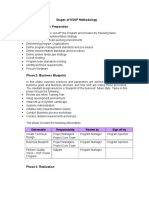 228336798 ASAP Phases Deliverables