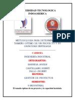 1 METODOLOGIA PARA DETERMINAR EL TAMAÑO OPTIMO DE UN PROYECTO.pdf