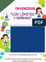 Expo Normas Limi