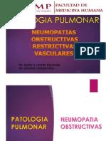 320330398 Lab Patologia II Neumopatias Obstructivas Restrictivas y Vasculates