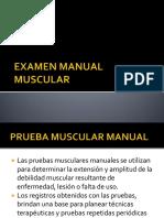 2 Examen Manual Muscular