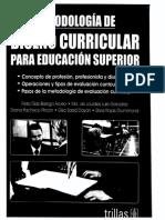 MetodologÍa de Diseño Curricular Para Educación Superior Díaz Barriga Et Al