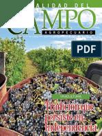 Campo - Año 17 - Numero 199 - Enero 2018 - Paraguay - Portalguarani