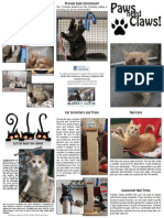 Humane Alternatives to Declawing!