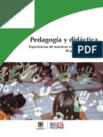 Pedagogia y Didactica en colombia.pdf