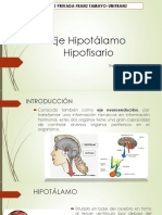 Eje Hipotalamo Hiposiario