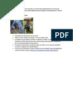 Proyecto Ed.ambiental