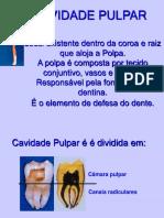 Anatomia Da Cavidade Pulpar