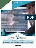 Brochure Desarrollo de Software y Programacion Segura