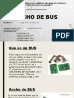 Ancho de Bus - Roger Listoooo