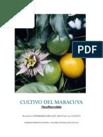 Cultivo Del Maracuya