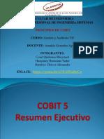 Principios de Cobit Grupo 12
