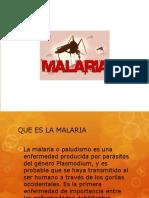 Dengue Malaria Leishmaniasis Ok (1)