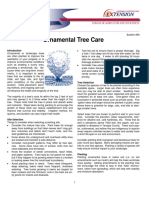 Ornamental Tree Care