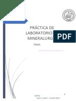 Informe Concentracion Magnetica