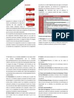 EL PROCESO DE LA COAGULACIÓN.docx