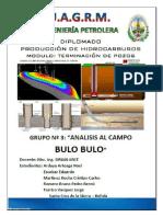 345482587-Proyecto-Campo-BULO-BULO.docx