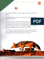 EL CHACAL.pdf