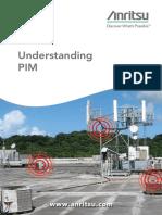 Understanding Pim