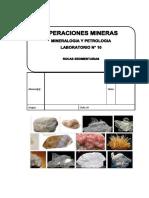Laboratorio 10 Rocas Sedimentarias