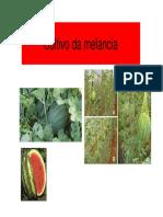 MELAO.pdf