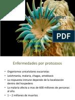 Infecciones Parasitarias y Micóticas