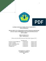 SUKSES PKM revisi terbaru fixxxxx.docx