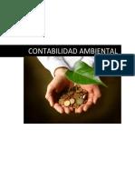 Monografia de Conta Ambiental Final1