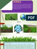 FP3 FREDY.pdf