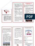 291282721-Triptico-Estado-Peruano.docx