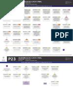 Audiencia de Juicio Oral Microflujo.pdf