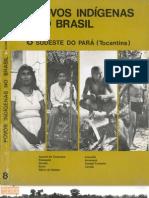 Povos Indígenas no Brasil - volume 8