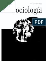 Falicov E. Lifzyc S._sociología